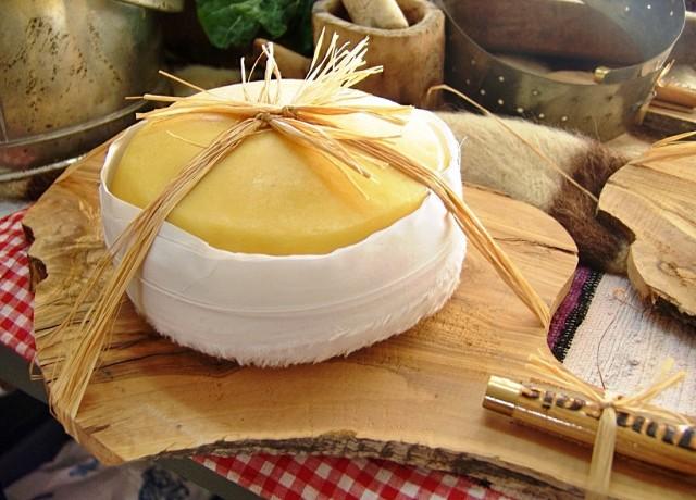 melhores queijos de portugal