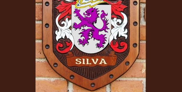 Origem e significado do apelido Silva