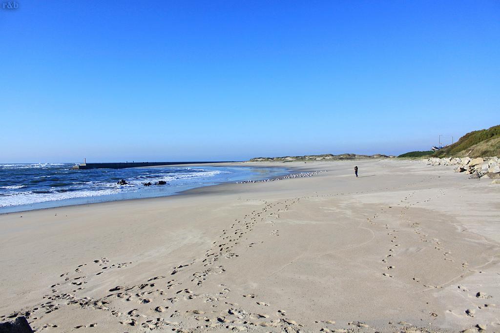 Praia de Castelo de Neiva
