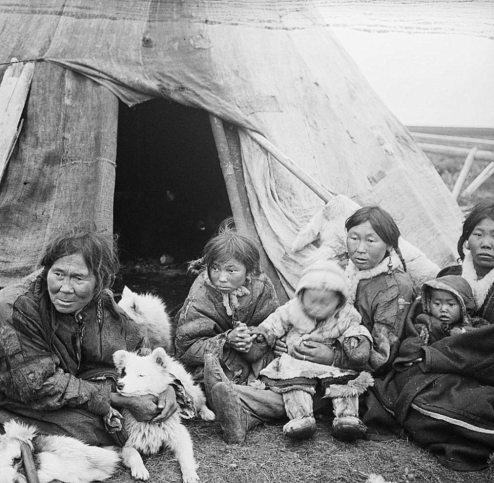 Nenet people