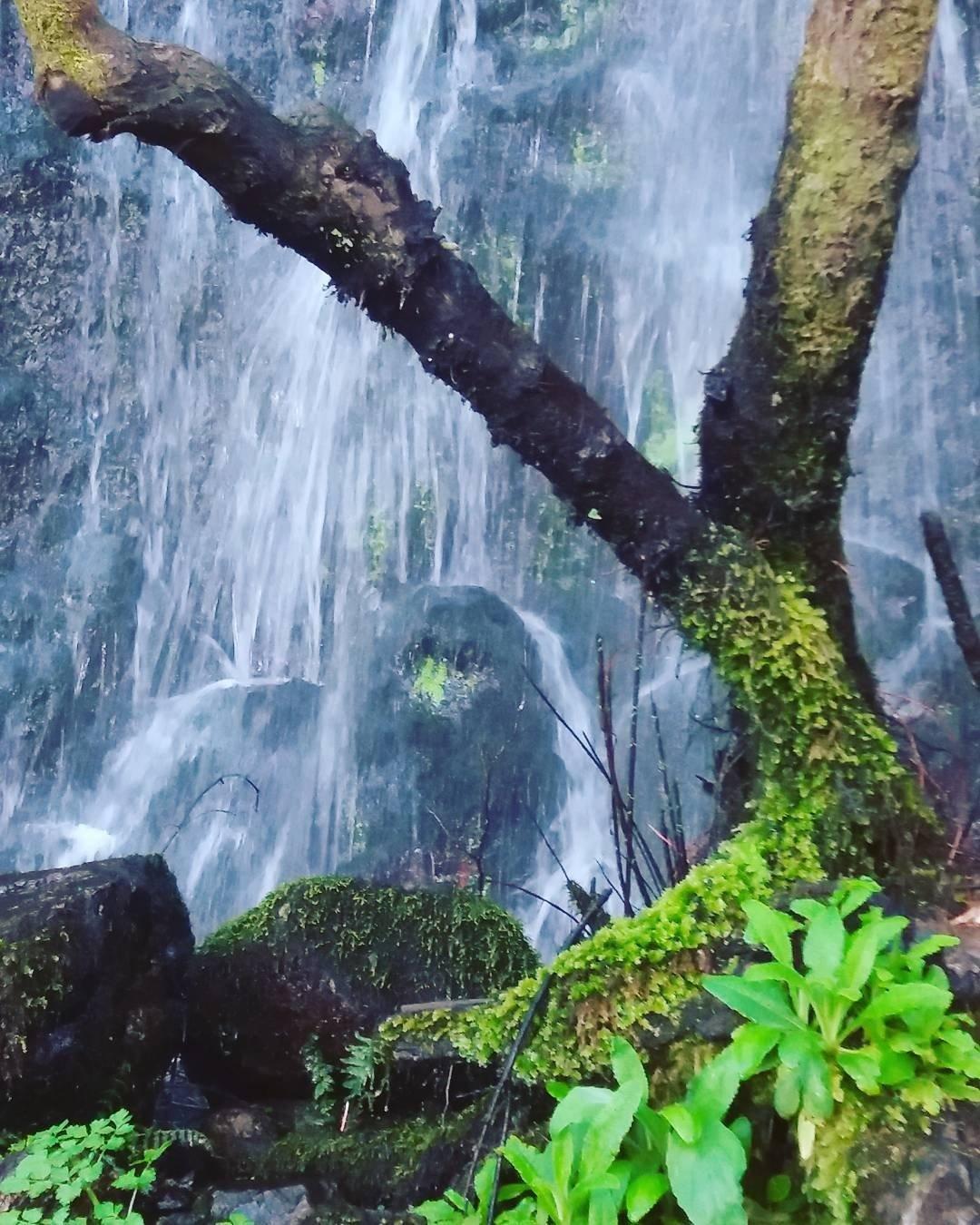 Cascata do Barbelote