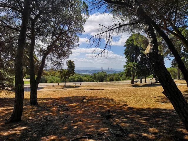 Parque Florestal do Monsanto