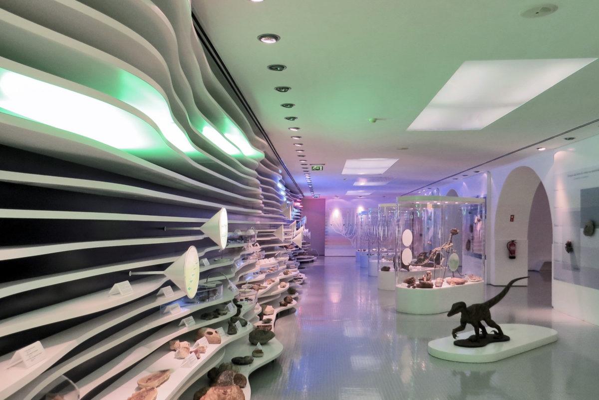 Museu de História Natural de Sintra