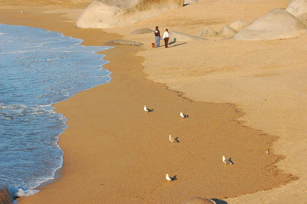 Praia de Lavadores, Vila Nova de Gaia
